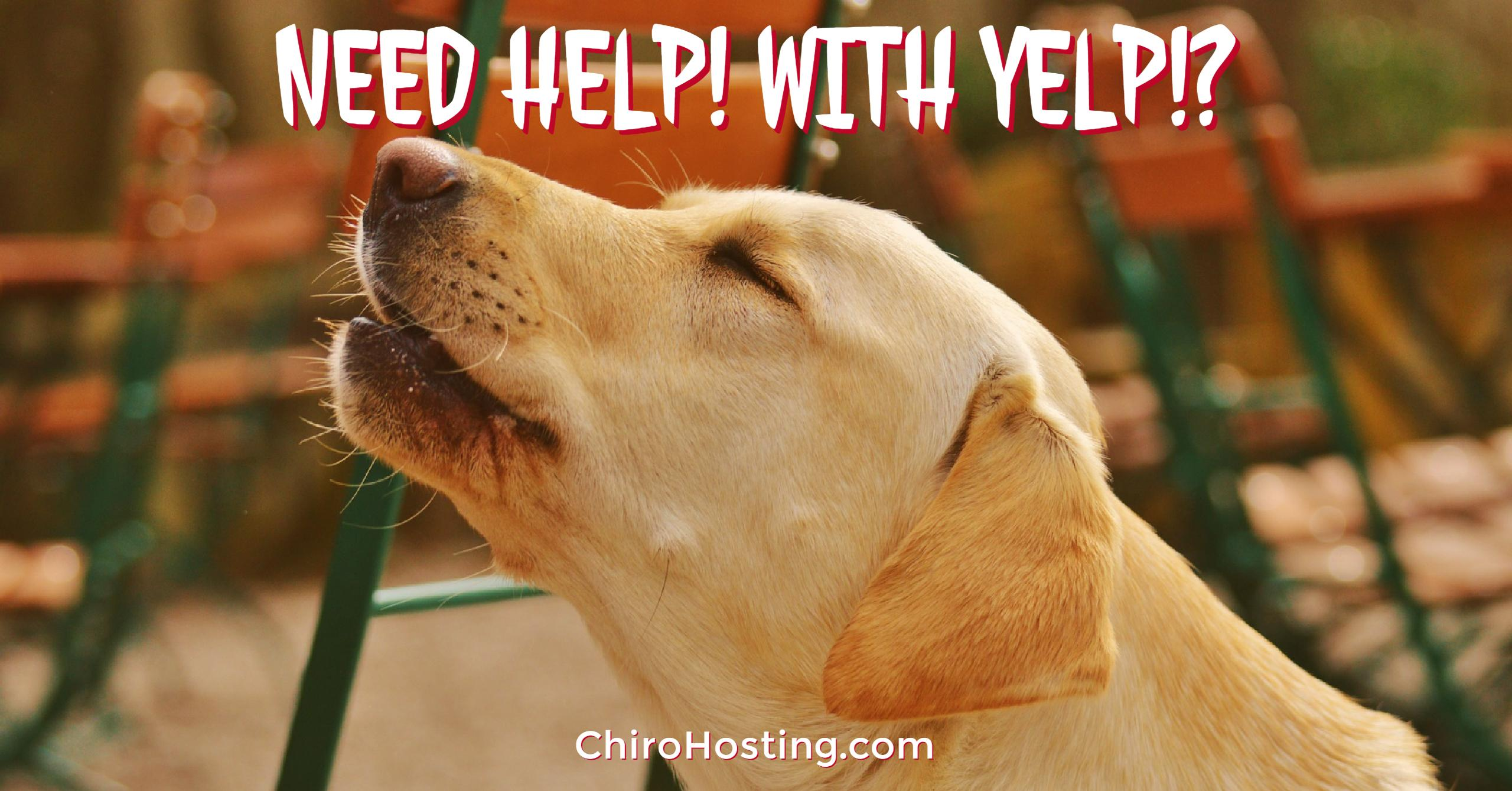 Need HELP With YELP Reviews? We've Got You Covered!